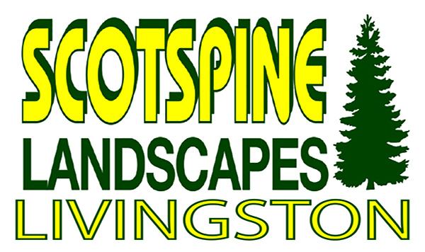 Scotspine Landscapes - Livingston