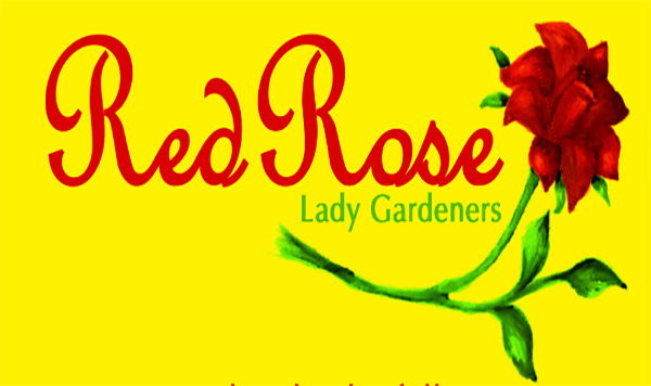 Red Rose Lady Gardeners