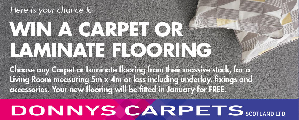 CARPET or LAMINATE FLOORING